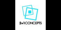 2+1 Concepts